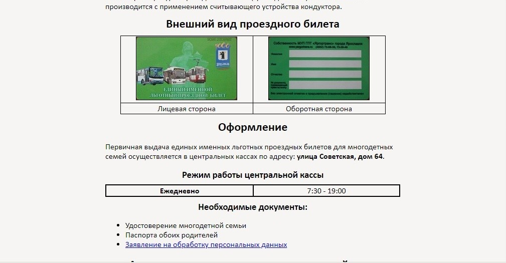 Внешний вид электронного проездного билета для многодетных семей